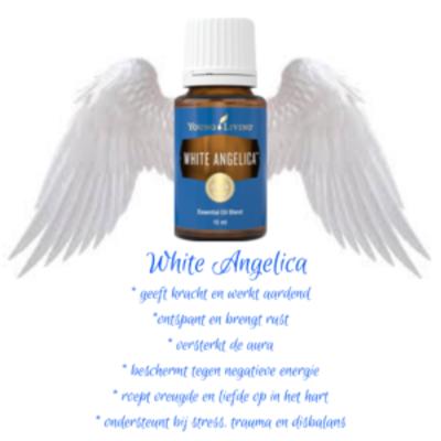 blog-white-angelica